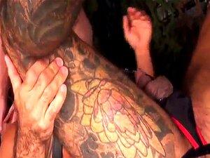 Ursos De Barba A Rimar Maturos Tatuados E Rabos Porn