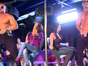Urso Dançarino-a Começar A Festa Com Pilas Grandes A Balançar Nas Putas Porn