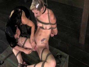 Caixa Amarrada Skank Aprende Disciplina Porn