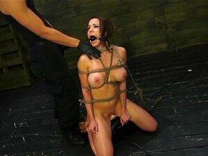 Kylie Rogue #1 Desgraça Sexual Super Grande Clitóris Sexualdiscrace. A Kylie Rogue é Uma Supah Dupah Fuhhhhreak Com Um Clítoris Marado Que Implora Para Ser Brincado! Os SheTs Também Têm Um Conjunto De Mamas Que Parecem Fantásticas, Amarradas Num Arnês De  Porn