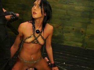 Sabrina Banks Nº1: Gungeon Vergonha Sexual Gangster-Sexualdiscrace. Sabrina, A Beleza Morena Escura E Misteriosa Com O Corpo De Uma Modelo E Aqueles Olhos Fumegantes, De Quarto, Parecem-se Com Ela?d Estar Como Em Casa Num Salão De Baile Ou Na Passarela De Porn